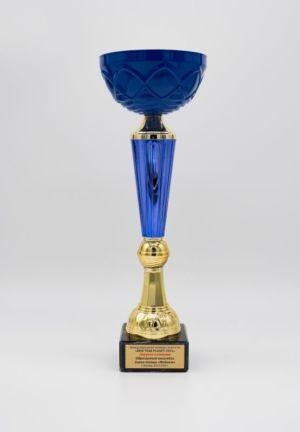 награды-6